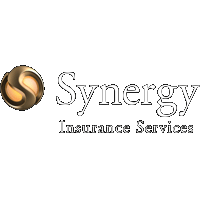 Synergy Insurance Services Holdings