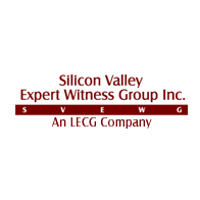 Silicon Valley Expert Witness