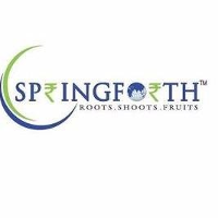 Springforth Capital Advisors?uq=w9if130k