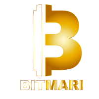 Bitmari (Other Financial Services)