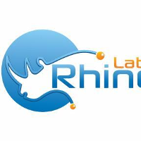 Rhino Labs (Network Management Software)