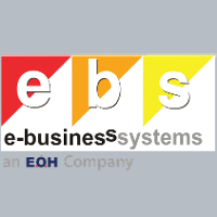 E Business Systems