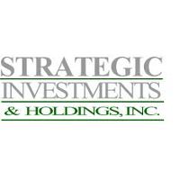Strategic Investments & Holdings